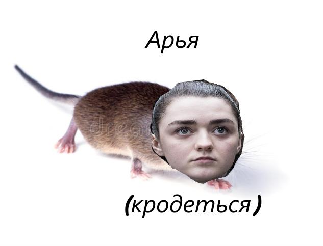арьямыш